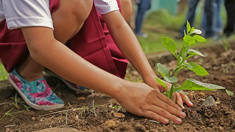 Junge Platzt einen Baum